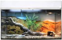 Террариум Lucky Reptile Стартовый комплект для бородатых агам / SK80BD-W (белый) -