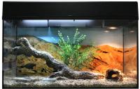 Террариум Lucky Reptile Стартовый комплект для бородатых агам / SK80BD-B (черный) -