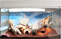 Террариум Lucky Reptile Стартовый комплект для гекконов / SK50DG-W (белый) -