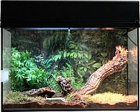 Террариум Lucky Reptile Стартовый комплект для пауков и скорпионов / SK50TS-B (черный) -