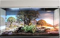 Террариум Lucky Reptile Стартовый комплект для сухопутных черепах / SK80TO-W (белый) -