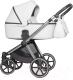 Детская универсальная коляска Riko Qubus 3 в 1 (04/platinum) -