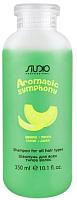 Шампунь для волос Kapous Aromatic Symphony для всех типов волос банан и дыня (350мл) -