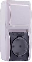 Блок выключатель+розетка Lezard Nata 710-0200-172 -