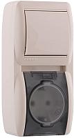 Блок выключатель+розетка Lezard Nata 710-0300-172 -