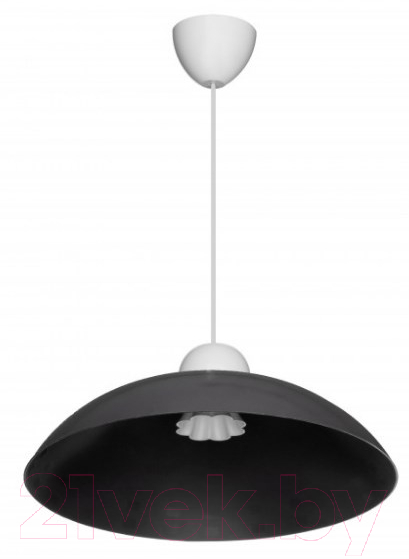 Купить Потолочный светильник Erka, 1301 (черный), Украина