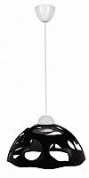 Потолочный светильник Erka 1304 (черный) -