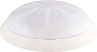 Светильник Erka 1149 LED-B (белый) -