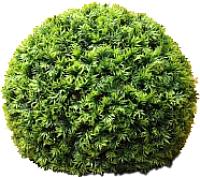 Искусственное растение Green Fly Самшит Крапива / С-15-29 -