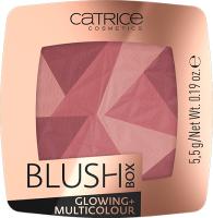 Румяна Catrice Blush Box Glowing + Multicolour тон 020 (5.5г) -