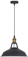 Потолочный светильник J-light Vena 1402/1P (кофе/черный) -