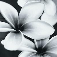 Панно Opoczno Pret-a-porter Flower Grey OD334-005 (750x750) -