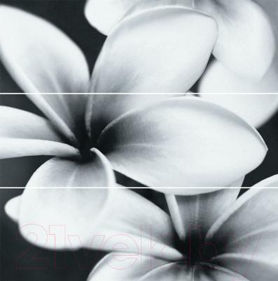 Панно Opoczno Pret-a-porter Flower Grey OD334-005 (750x750)