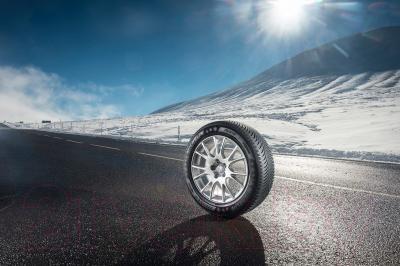 Зимняя шина Michelin Alpin 5 225/50R17 98H