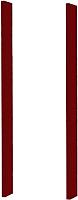 Комплект сменных элементов Triton для зеркала-шкафа Эко 60 / 005.42.0600.121.01.06.U.М2 (вишневый) -