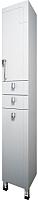 Шкаф-пенал для ванной Triton Диана 30 с корзиной (002.11.0300.201.02.01 R) -