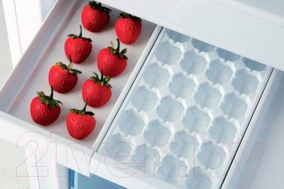 Холодильник с морозильником Beko RCNK400E20ZGR - поддон для ягод