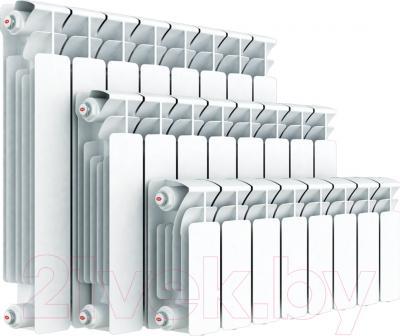 Радиатор биметаллический Rifar Base 500 (10 секций) - реальный вид товара может отличаться от представленного