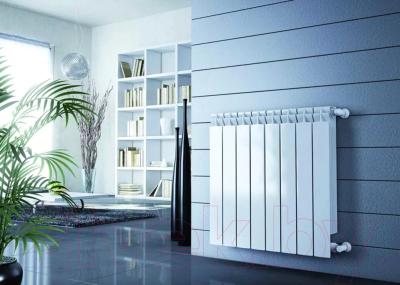 Радиатор биметаллический Rifar Base 500 (10 секций)