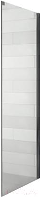 Душевая стенка Riho, Ocean GU0300102 P 80, Чехия  - купить со скидкой