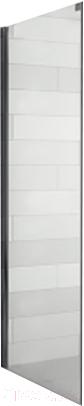 Купить Душевая стенка Riho, Ocean GU0304101 L 100, Чехия