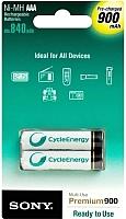 Комплект аккумуляторов Sony NH-AAAB2GN -