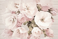Декоративная плитка Cersanit Sakura Flower (300x450) -