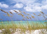 Фотообои Komar Ocean Breeze 8-515 (368x254) -