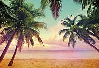 Фотообои Komar Miami 8-967 (368x254) -