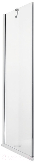 Купить Душевая стенка Roltechnik, Elegant Line GBL1/100 (хром/прозрачное стекло), Чехия