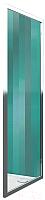 Душевая стенка Roltechnik Lega Line LLB/80 (хром/прозрачное стекло) -
