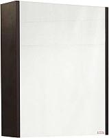 Шкаф с зеркалом для ванной Sanflor Ларго 60 L / Lr.02.60 (вяз швейцарский) -