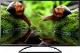 Телевизор Horizont 55LE7161D -