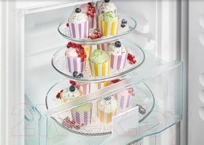Холодильник с морозильником Liebherr CNel 4313