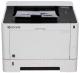 Принтер Kyocera Mita ECOSYS P2040dn -