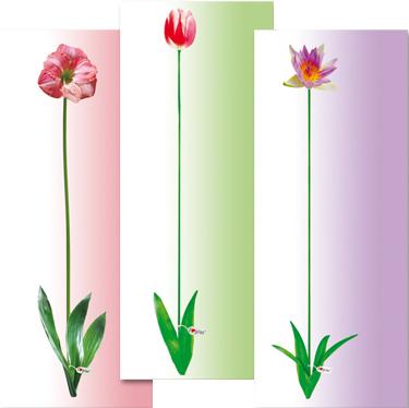 Чехол для гладильной доски Gimi I Love Gimi (M) - вариант расцветки