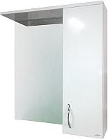 Шкаф с зеркалом для ванной Cersanit Erica / F-LS-ERN60 -