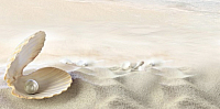 Декоративная плитка Belani Фрезия Ракушка 5 бежевая (250x500) -