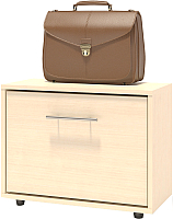Тумба для обуви Сокол-Мебель ТП-1 (беленый дуб) -