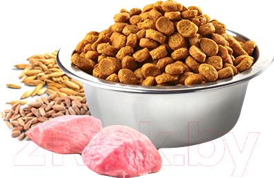 Корм для собак Farmina N&D Low Grain Lamb & Blueberry Puppy Medium & Maxi (2.5кг)