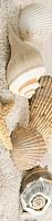 Бордюр Golden Tile Summer Stone Holiday В41351 (250x60, бежевый) -