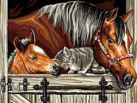 Картина по номерам Picasso Лошади и котик (PC3040045) -