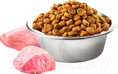 Корм для собак Farmina N&D Grain Free Pumpkin Lamb & Blueberry Puppy Mini (2.5кг)