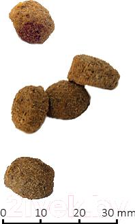 Корм для собак Farmina Vet Life Obesity (2кг)
