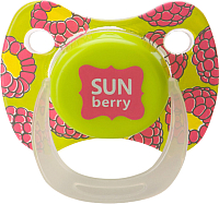 Пустышка Happy Baby Baby Pacifier 13010/1 (лайм) -