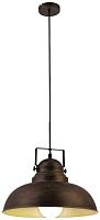 Светильник Arte Lamp Martin A5213SP-1BR -