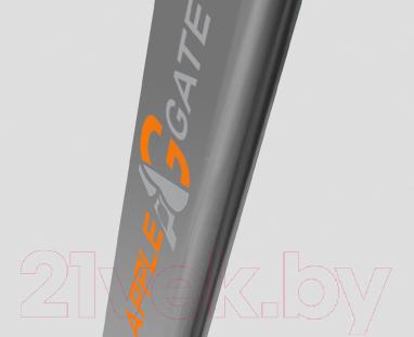Электрическая беговая дорожка AppleGate T20 A
