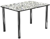 Обеденный стол Васанти Плюс ПРФ 110x70 (хром/117) -