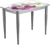 Обеденный стол Васанти Плюс ПРФ 110x70/3К/ОА (алюминий/94) -