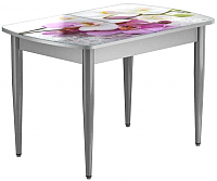 Обеденный стол Васанти Плюс БРФ 110/142x70/1Р/ОА (алюминий/94) -